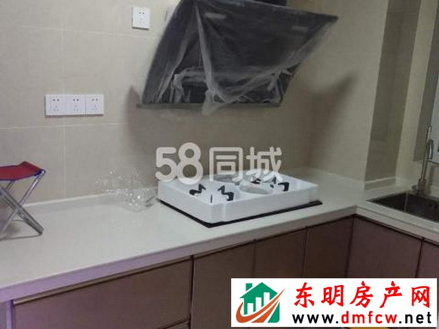 天泽御府 2室1厅 90平米 精装修 1200元/月